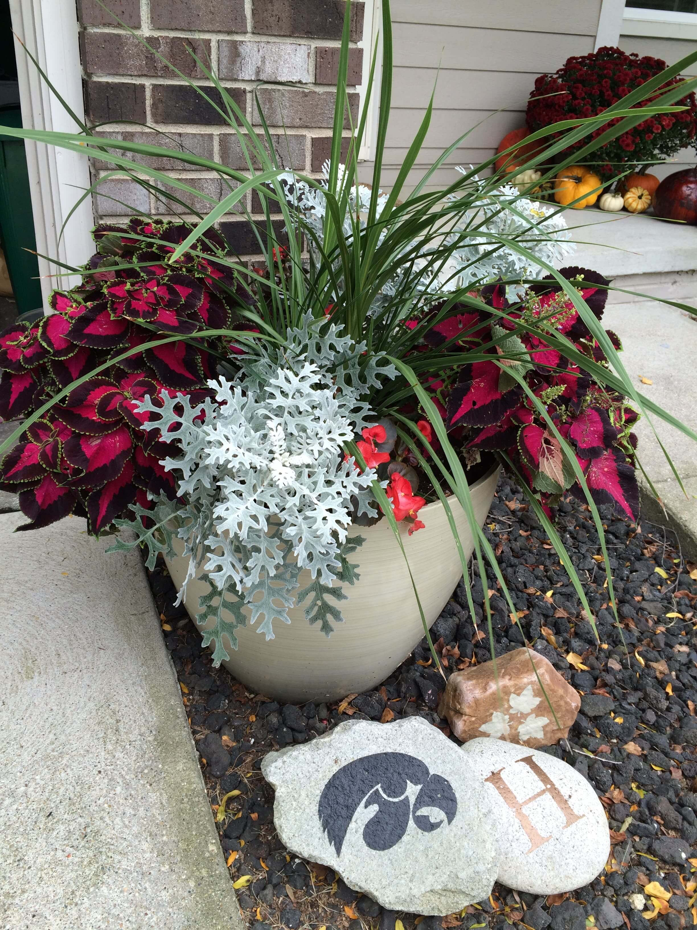 Make A Shade Loving Container Garden Sometimes Homemade